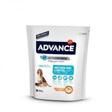 Advance Mother Dog & Initial sausas maistas šuniukams