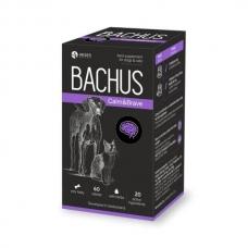 BACHUS CALM&BRAVE 60 tab papildai nervinei šunų ir kačių sistemai