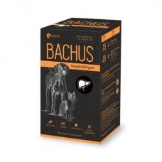 BACHUS HEPATIC&DIGEST 60 tab papildai šunų ir kačių virškinimo sistemai