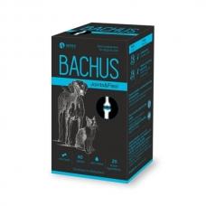 Bachus Joint & Flexi 60 tab. papildai skirti šunims ir katėms