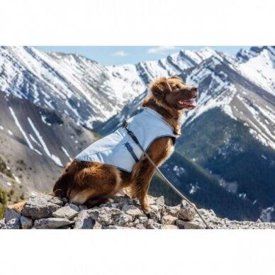 Kurgo DOG CORE COOLING VEST vėsinanti liemenė šunims 9