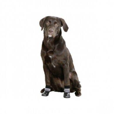 Kerbl DOG SOCKS SUSI bateliai šunims 4