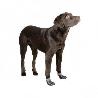 Kerbl DOG SOCKS SUSI bateliai šunims 3