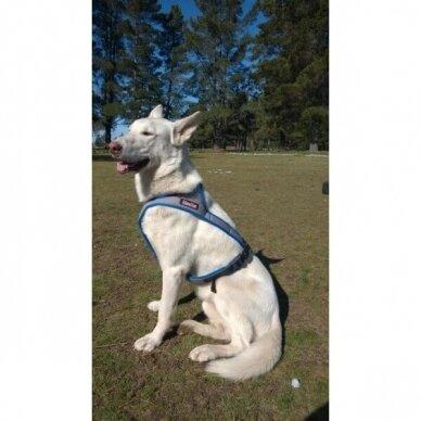 ManMat  HALF LASH harness petnešos šunims 9