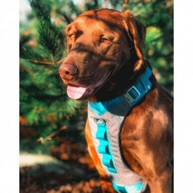 Kurgo JOURNEY AIR DOG HARNESS petnešos šunims 9