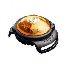 Orbiloc Dog Dual saugos lemputė šunims