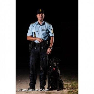 Orbiloc Dog Dual saugos lemputė šunims 21