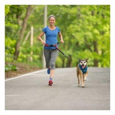 KURGO SPRINGBACK LITE DOG LEASH -RUNNING LEASH 2